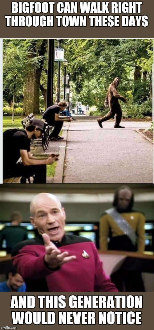 DAMN SMART PHONES | BIGFOOT CAN WALK RIGHT THROUGH TOWN THESE DAYS AND THIS GENERATION WOULD NEVER NOTICE | image tagged in memes,picard wtf,bigfoot | made w/ Imgflip meme maker