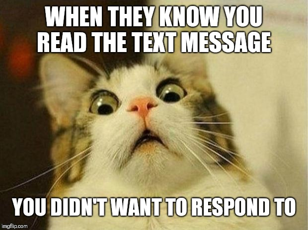 Scared Cat Meme |  WHEN THEY KNOW YOU READ THE TEXT MESSAGE; YOU DIDN'T WANT TO RESPOND TO | image tagged in memes,scared cat | made w/ Imgflip meme maker