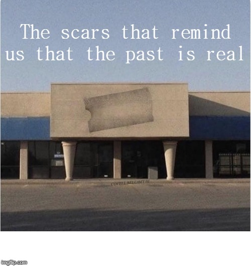 The scars that remind us that the past is real COVELL BELLAMY III | image tagged in scars of the past | made w/ Imgflip meme maker
