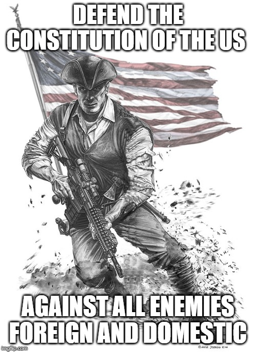 DEFEND THE CONSTITUTION OF THE US AGAINST ALL ENEMIES FOREIGN AND DOMESTIC | image tagged in usa,constitution,merica | made w/ Imgflip meme maker