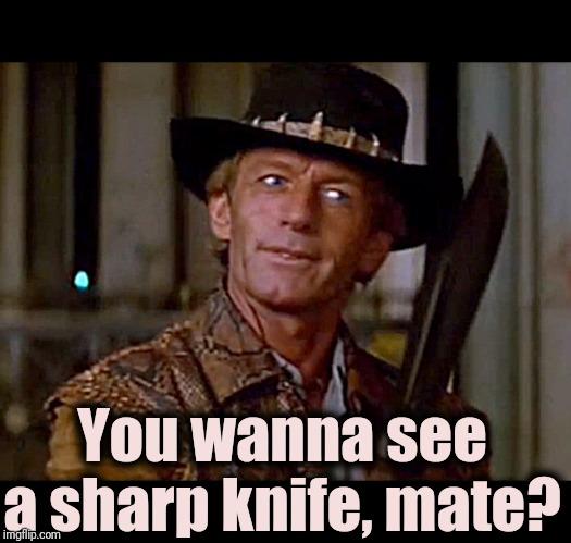Crocodile Dundee Knife | You wanna see a sharp knife, mate? | image tagged in crocodile dundee knife | made w/ Imgflip meme maker