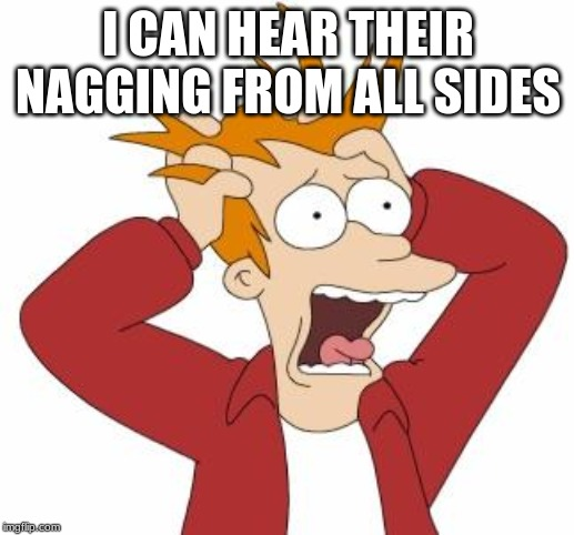 Fry Freaking Out | I CAN HEAR THEIR NAGGING FROM ALL SIDES | image tagged in fry freaking out | made w/ Imgflip meme maker