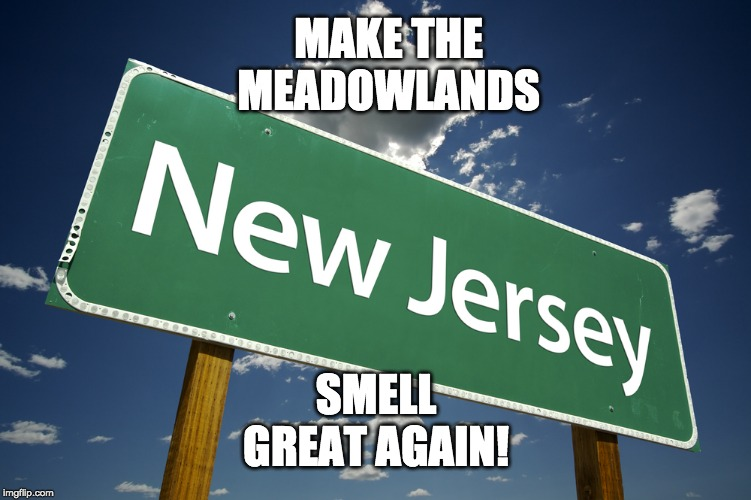 New Jersey |  MAKE THE MEADOWLANDS; SMELL GREAT AGAIN! | image tagged in new jersey | made w/ Imgflip meme maker