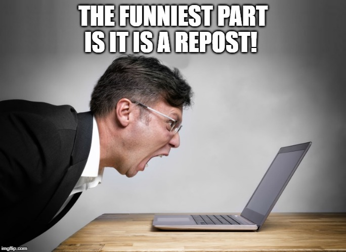 THE FUNNIEST PART IS IT IS A REPOST! | image tagged in yelling at laptop | made w/ Imgflip meme maker
