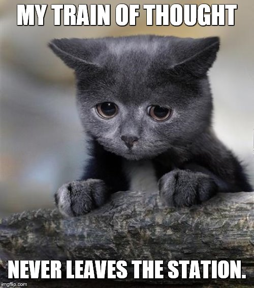 Confession Cat | MY TRAIN OF THOUGHT NEVER LEAVES THE STATION. | image tagged in confession cat | made w/ Imgflip meme maker