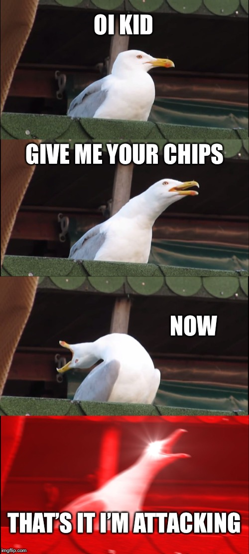 Inhaling Seagull | OI KID GIVE ME YOUR CHIPS NOW THAT'S IT I'M ATTACKING | image tagged in memes,inhaling seagull | made w/ Imgflip meme maker