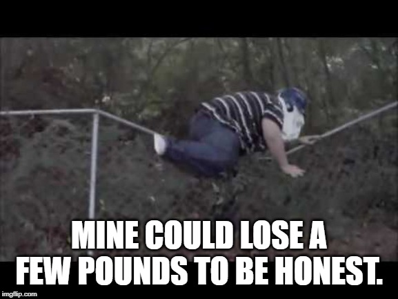 MINE COULD LOSE A FEW POUNDS TO BE HONEST. | made w/ Imgflip meme maker