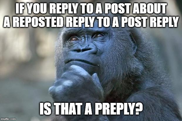 that is the question | IF YOU REPLY TO A POST ABOUT A REPOSTED REPLY TO A POST REPLY IS THAT A PREPLY? | image tagged in that is the question | made w/ Imgflip meme maker