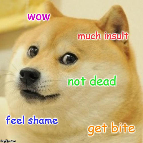 Doge Meme | wow much insult not dead feel shame get bite | image tagged in memes,doge | made w/ Imgflip meme maker