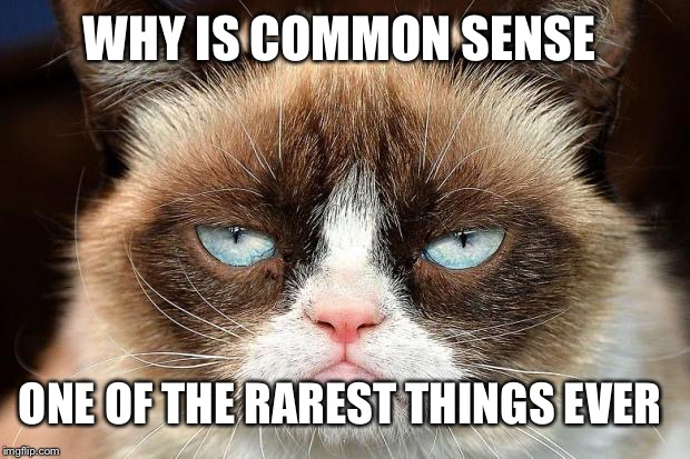 Not so common now is it | WHY IS COMMON SENSE ONE OF THE RAREST THINGS EVER | image tagged in memes,grumpy cat not amused,grumpy cat,common sense | made w/ Imgflip meme maker