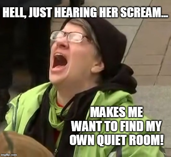 Whiny Little SnowFlake | HELL, JUST HEARING HER SCREAM... MAKES ME WANT TO FIND MY OWN QUIET ROOM! | image tagged in snowflake,antifa,whining,retarded liberal protesters,go away,libtard | made w/ Imgflip meme maker