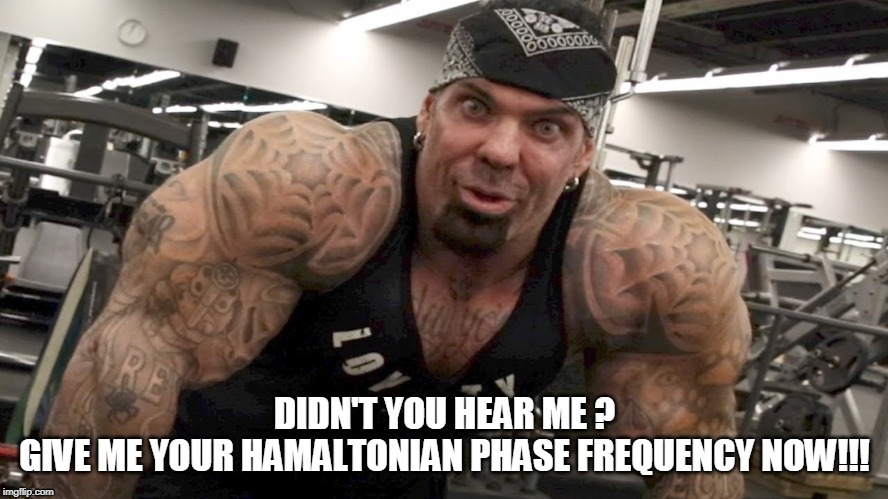 Didn't You Hear Me ? Give Me Your Hamiltonian Phase Frequency Now !!! | image tagged in rich piana,hamiltonian phase frequency,give me,hear me,now,rip rich piana | made w/ Imgflip meme maker