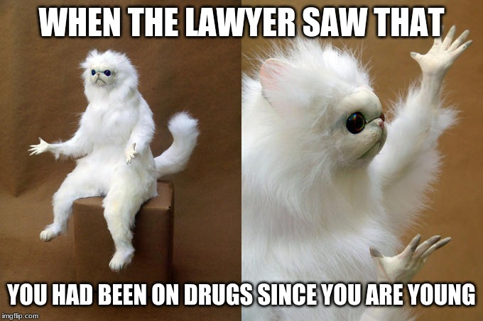 Don't Do Drugs Kids! |  WHEN THE LAWYER SAW THAT; YOU HAD BEEN ON DRUGS SINCE YOU ARE YOUNG | image tagged in memes,persian cat room guardian,drugs,don't do drugs,lawyer | made w/ Imgflip meme maker