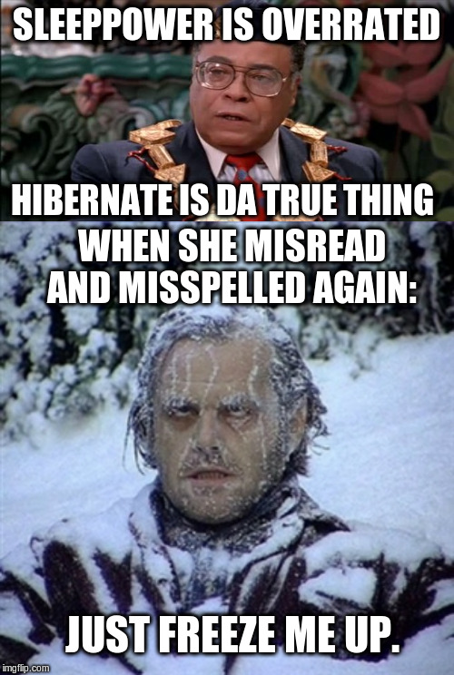 SLEEPPOWER IS OVERRATED HIBERNATE IS DA TRUE THING WHEN SHE MISREAD AND MISSPELLED AGAIN: JUST FREEZE ME UP. | image tagged in frozen guy,king jaffe coming to america overrated | made w/ Imgflip meme maker