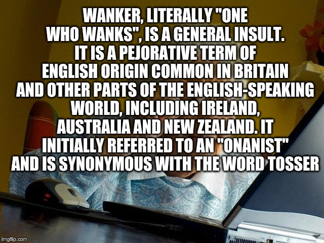 "Grandma Finds The Internet Meme | WANKER, LITERALLY ""ONE WHO WANKS"", IS A GENERAL INSULT. IT IS A PEJORATIVE TERM OF ENGLISH ORIGIN COMMON IN BRITAIN AND OTHER PARTS OF THE E 