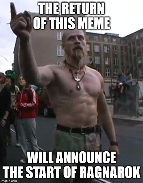 Techno Viking | THE RETURN OF THIS MEME WILL ANNOUNCE THE START OF RAGNAROK | image tagged in techno viking | made w/ Imgflip meme maker