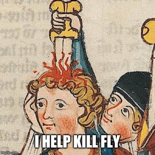 XD | I HELP KILL FLY | image tagged in xd | made w/ Imgflip meme maker