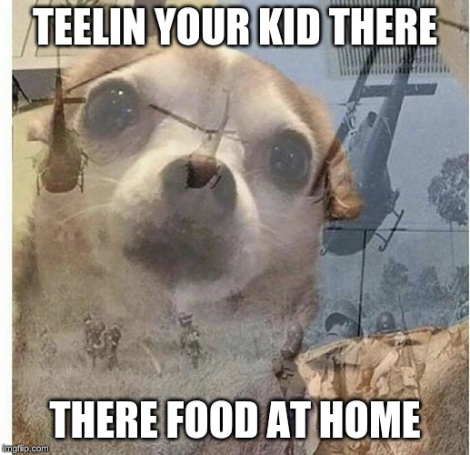 PTSD Chihuahua | TEELIN YOUR KID THERE THERE FOOD AT HOME | image tagged in ptsd chihuahua | made w/ Imgflip meme maker