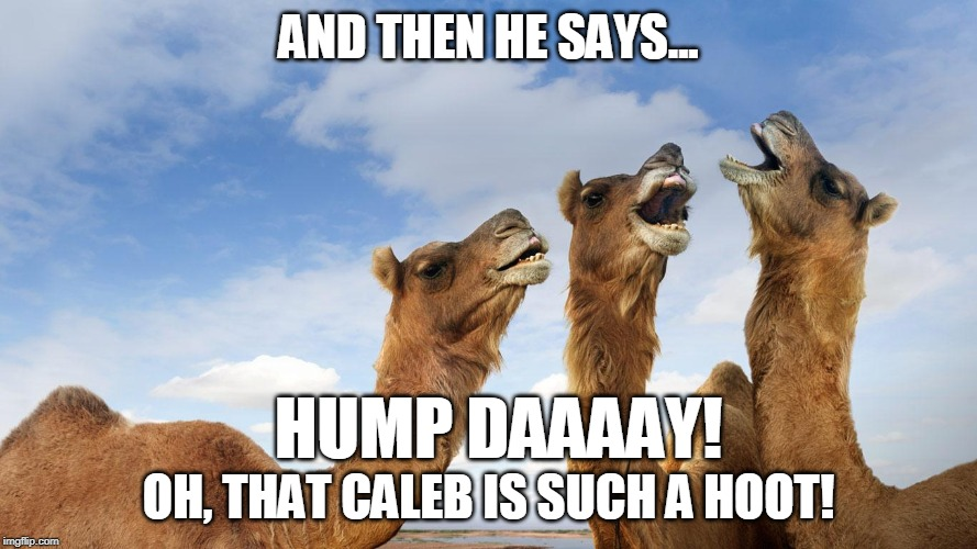 Caleb says Hump Daaaay! | AND THEN HE SAYS... OH, THAT CALEB IS SUCH A HOOT! HUMP DAAAAY! | image tagged in camel,hump day,funny memes,geico | made w/ Imgflip meme maker