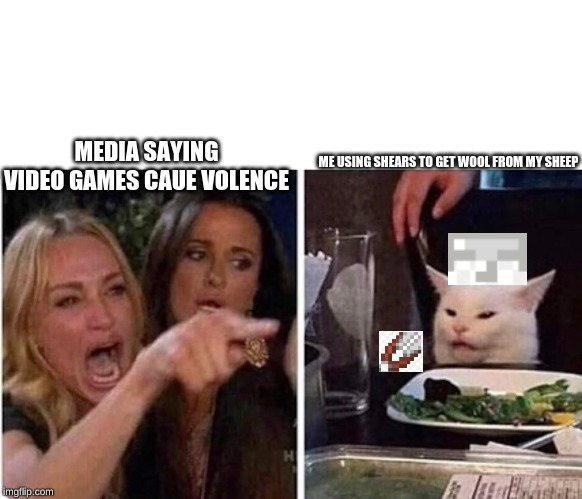 lady yelling at cat | MEDIA SAYING VIDEO GAMES CAUE VOLENCE ME USING SHEARS TO GET WOOL FROM MY SHEEP | image tagged in lady yelling at cat | made w/ Imgflip meme maker