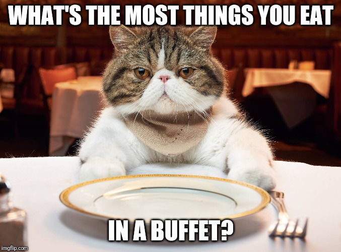 Thinking about buffets yet? | WHAT'S THE MOST THINGS YOU EAT IN A BUFFET? | image tagged in hungry cat | made w/ Imgflip meme maker