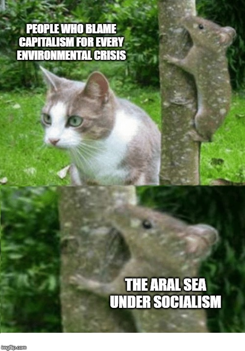 Trying to blame ism's for environmental crises | PEOPLE WHO BLAME CAPITALISM FOR EVERY ENVIRONMENTAL CRISIS THE ARAL SEA UNDER SOCIALISM | image tagged in politics,environment,political,socialism,soviet union | made w/ Imgflip meme maker