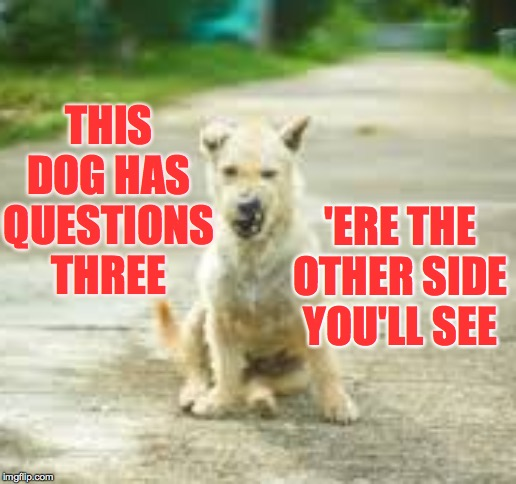 Is that ham I smell?  Is it?  Is it?! | THIS DOG HAS QUESTIONS THREE 'ERE THE OTHER SIDE YOU'LL SEE | image tagged in memes,bridgekeeper,ham,monty python,dogs | made w/ Imgflip meme maker