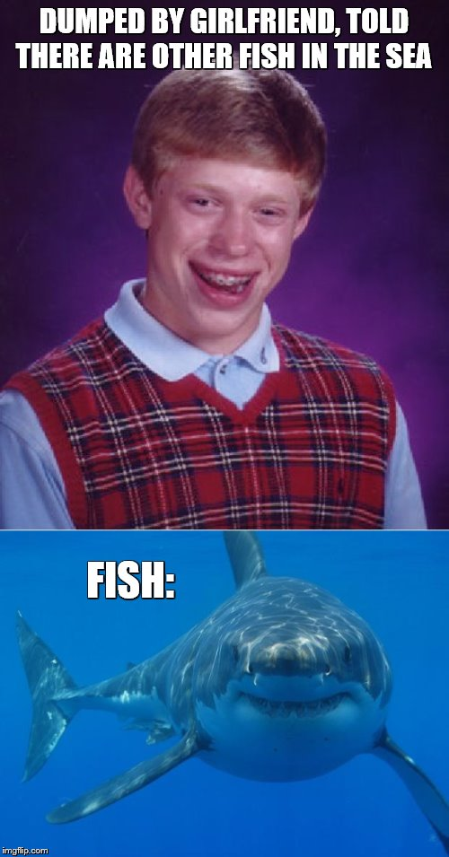 DUMPED BY GIRLFRIEND, TOLD THERE ARE OTHER FISH IN THE SEA FISH: | image tagged in memes,bad luck brian,straight white shark,shark,fish | made w/ Imgflip meme maker