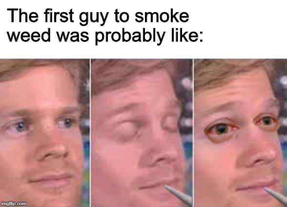 The first guy to smoke weed was probably like: | image tagged in the first guy,smoke weed,weed,the first guy to,memes | made w/ Imgflip meme maker