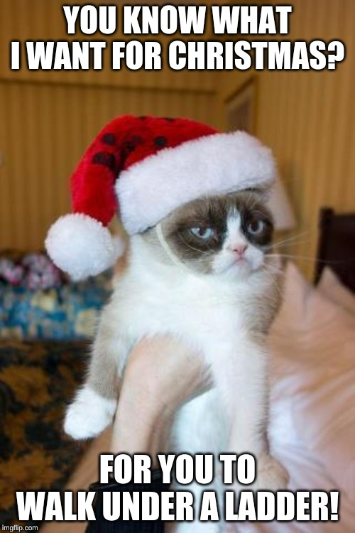 Grumpy Cat Christmas | YOU KNOW WHAT I WANT FOR CHRISTMAS? FOR YOU TO WALK UNDER A LADDER! | image tagged in memes,grumpy cat christmas,grumpy cat | made w/ Imgflip meme maker