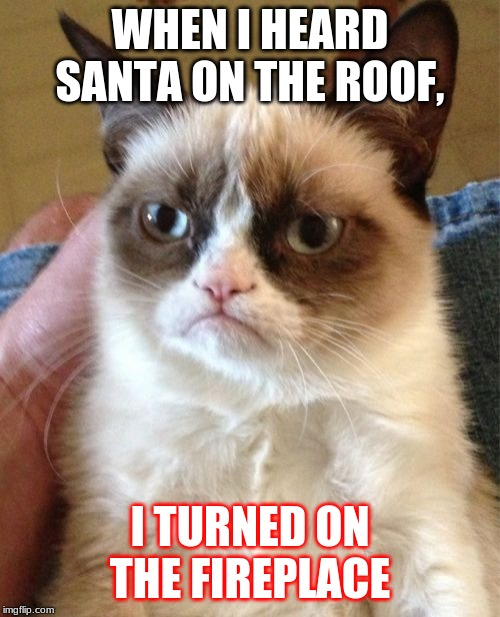 Grumpy Cat Meme | WHEN I HEARD SANTA ON THE ROOF, I TURNED ON THE FIREPLACE | image tagged in memes,grumpy cat | made w/ Imgflip meme maker