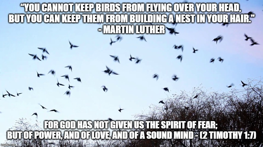 "Don't Be a Bird Brain |  ""YOU CANNOT KEEP BIRDS FROM FLYING OVER YOUR HEAD,  BUT YOU CAN KEEP THEM FROM BUILDING A NEST IN YOUR HAIR."" - MARTIN LUTHER; FOR GOD HAS NOT GIVEN US THE SPIRIT OF FEAR;  BUT OF POWER, AND OF LOVE, AND OF A SOUND MIND - (2 TIMOTHY 1:7) 