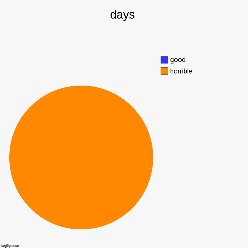 days | horrible , good | image tagged in charts,pie charts | made w/ Imgflip chart maker