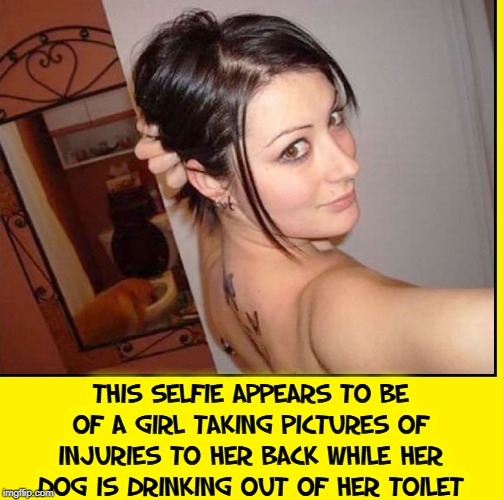 Explain the Selfie | This selfie appears to be of a girl taking pictures of injuries to her back while her dog is drinking out of her toilet | image tagged in vince vance,domestic abuse,brunette,selfie fail,dogs,toilet | made w/ Imgflip meme maker