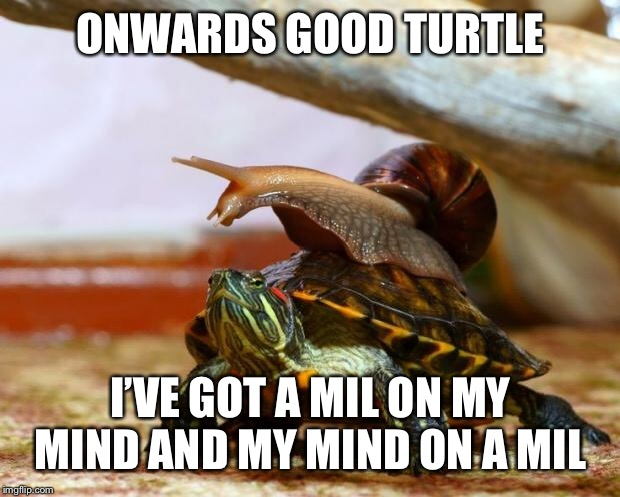 So close yet so far... |  ONWARDS GOOD TURTLE; I'VE GOT A MIL ON MY MIND AND MY MIND ON A MIL | image tagged in snail on a turtle,memes,imgflip,one million points | made w/ Imgflip meme maker