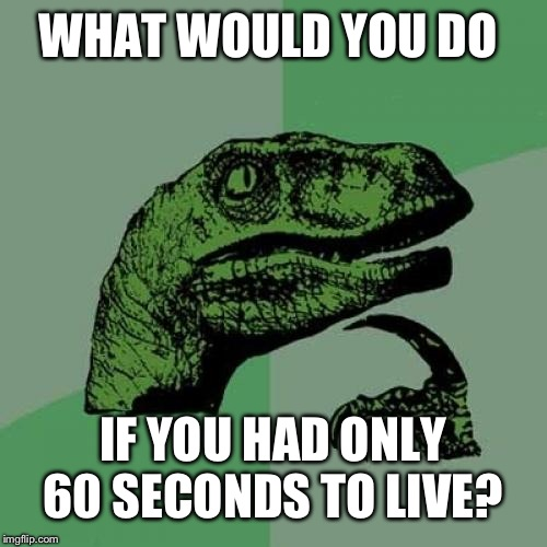 Philosoraptor | WHAT WOULD YOU DO IF YOU HAD ONLY 60 SECONDS TO LIVE? | image tagged in memes,philosoraptor | made w/ Imgflip meme maker