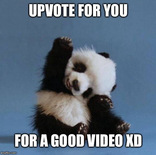 Panda | UPVOTE FOR YOU FOR A GOOD VIDEO XD | image tagged in panda | made w/ Imgflip meme maker