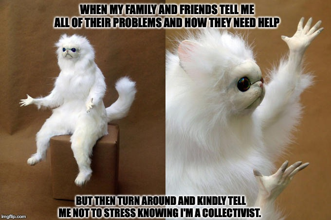 Persian Cat Room Guardian Meme | WHEN MY FAMILY AND FRIENDS TELL ME ALL OF THEIR PROBLEMS AND HOW THEY NEED HELP BUT THEN TURN AROUND AND KINDLY TELL ME NOT TO STRESS KNOWIN | image tagged in memes,persian cat room guardian | made w/ Imgflip meme maker