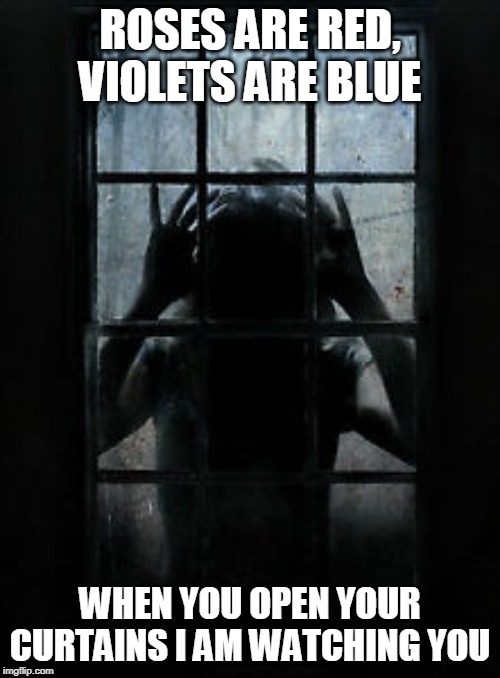 Window stalker | ROSES ARE RED, VIOLETS ARE BLUE WHEN YOU OPEN YOUR CURTAINS I AM WATCHING YOU | image tagged in window stalker | made w/ Imgflip meme maker