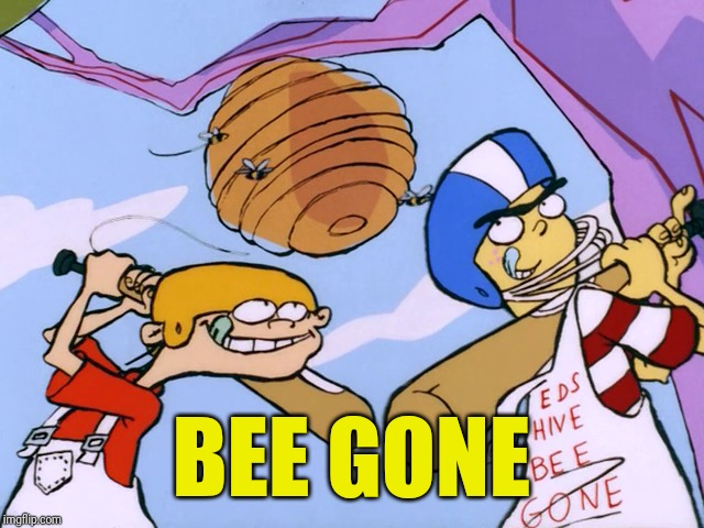 Eds Hive Bee Gone | BEE GONE | image tagged in memes,ed edd n eddy | made w/ Imgflip meme maker