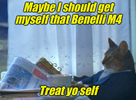 I Should Buy A Boat Cat | Maybe I should get myself that Benelli M4 Treat yo self | image tagged in memes,i should buy a boat cat | made w/ Imgflip meme maker