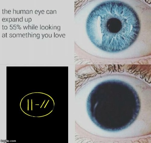 Eye pupil expand | image tagged in eye pupil expand | made w/ Imgflip meme maker