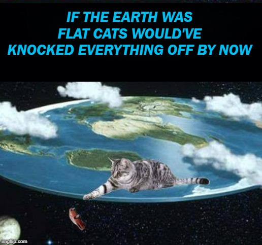 Flat Earthers | image tagged in silly,flat earthers,cats,knock,everything,off | made w/ Imgflip meme maker