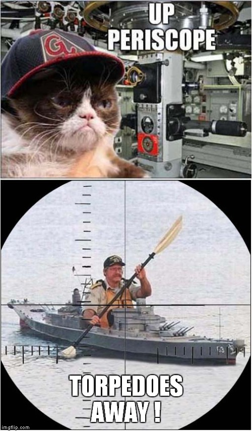 Cap'n Grumpy Strikes Again ! | TORPEDOES AWAY ! | image tagged in cats,grumpy cat,submarine | made w/ Imgflip meme maker