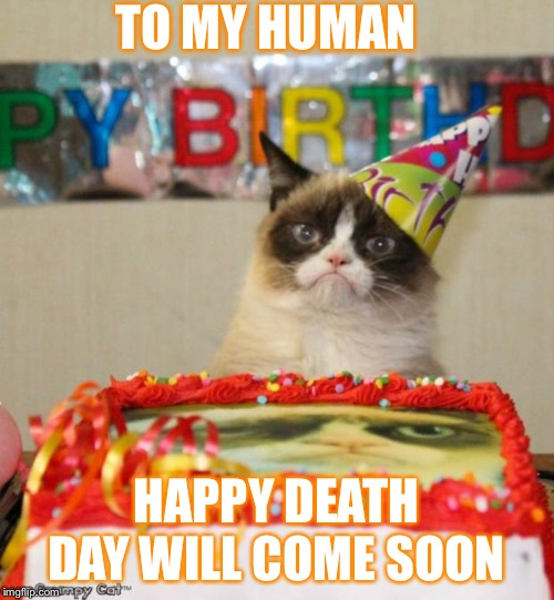 Grumpy Cat Birthday | TO MY HUMAN HAPPY DEATH DAY WILL COME SOON | image tagged in memes,grumpy cat birthday,grumpy cat | made w/ Imgflip meme maker