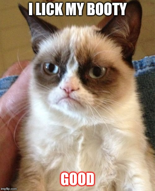 Grumpy Cat Meme | I LICK MY BOOTY GOOD | image tagged in memes,grumpy cat | made w/ Imgflip meme maker