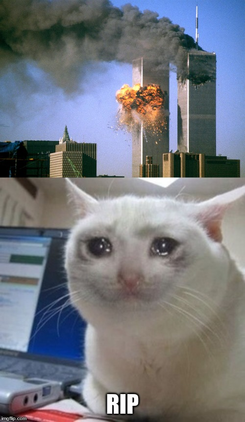 RIP | image tagged in 911 9/11 twin towers impact,cryingcat | made w/ Imgflip meme maker