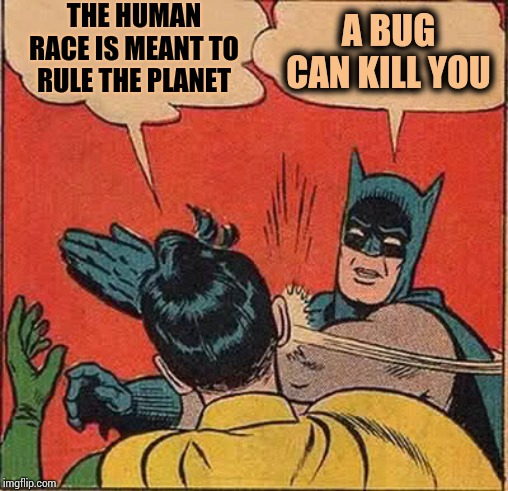 Not So All Powerful Now Are We |  THE HUMAN RACE IS MEANT TO RULE THE PLANET; A BUG CAN KILL YOU | image tagged in memes,batman slapping robin,bugs,disease,human race,modern problems | made w/ Imgflip meme maker