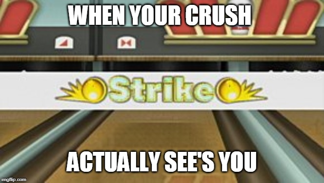 WHEN YOUR CRUSH ACTUALLY SEE'S YOU | image tagged in wii sports resort strike | made w/ Imgflip meme maker