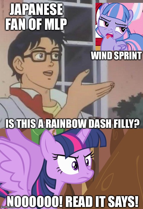 Is this a pigeon feat. MLP fim meme | JAPANESE FAN OF MLP WIND SPRINT IS THIS A RAINBOW DASH FILLY? NOOOOOO! READ IT SAYS! | image tagged in memes,is this a pigeon,twilight sparkle,mlp fim | made w/ Imgflip meme maker